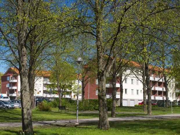 Källparksgatan 10 & 12, vy från Källparken.